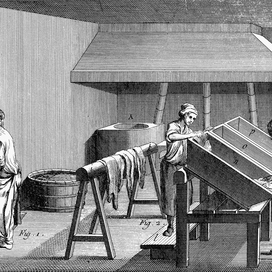 The History of Leather Tanning